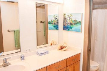 Unit 102 Guest Bathroom