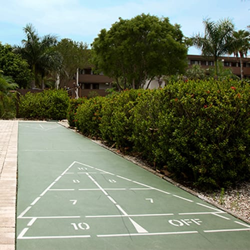 Shaded Shuffleboard Court